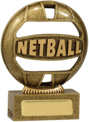 Netball 'The Ball' 110mm