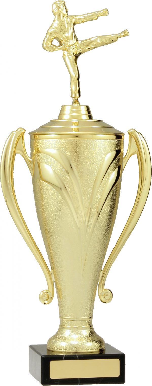 Gold Champion Cup 385mm