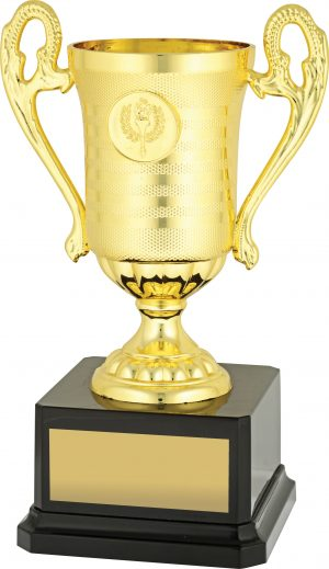 Sovereign Cup Gold 200mm