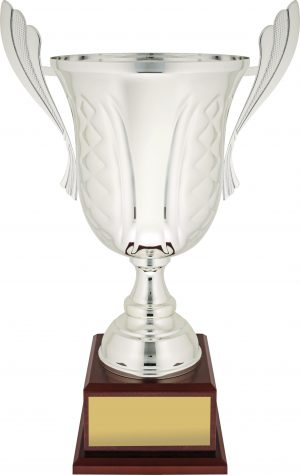 Celebration Cup Silver 540mm