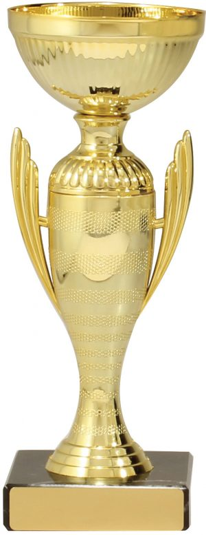 Guardian Cup Gold 210mm