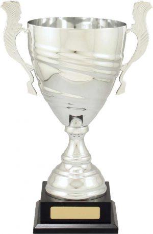 Prestige Cup Silver 330mm