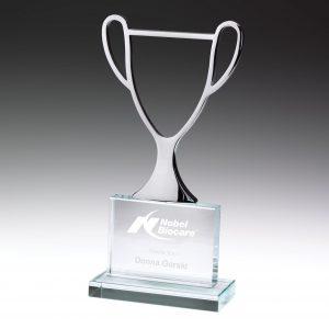 Champion Award Glass 250mm
