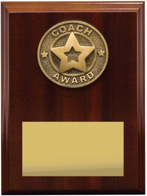 Coach Award Plaque 175mm