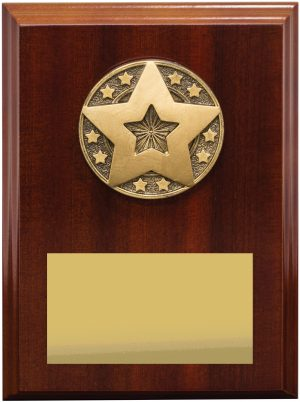 Star Award Plaque 175mm