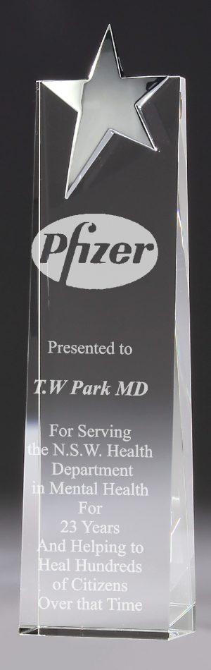 CIP Top Star Wedge 220mm