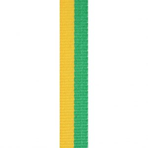 Green / Gold Loop Ribbon 12mm